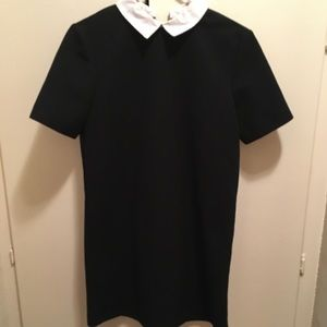 Zara simple black dress with white collar